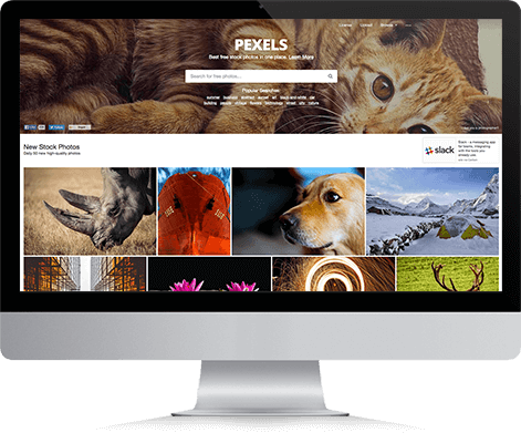 pexels-site-royalty-free-onigrama-apresentacoes